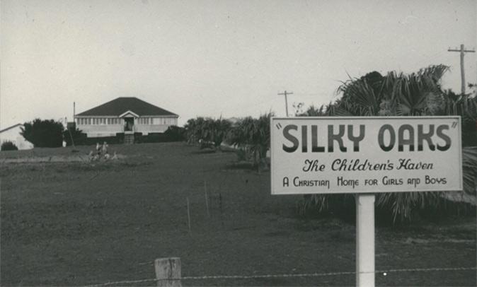 silky-oaks